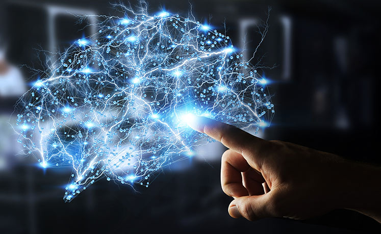 Ľudský mozog
