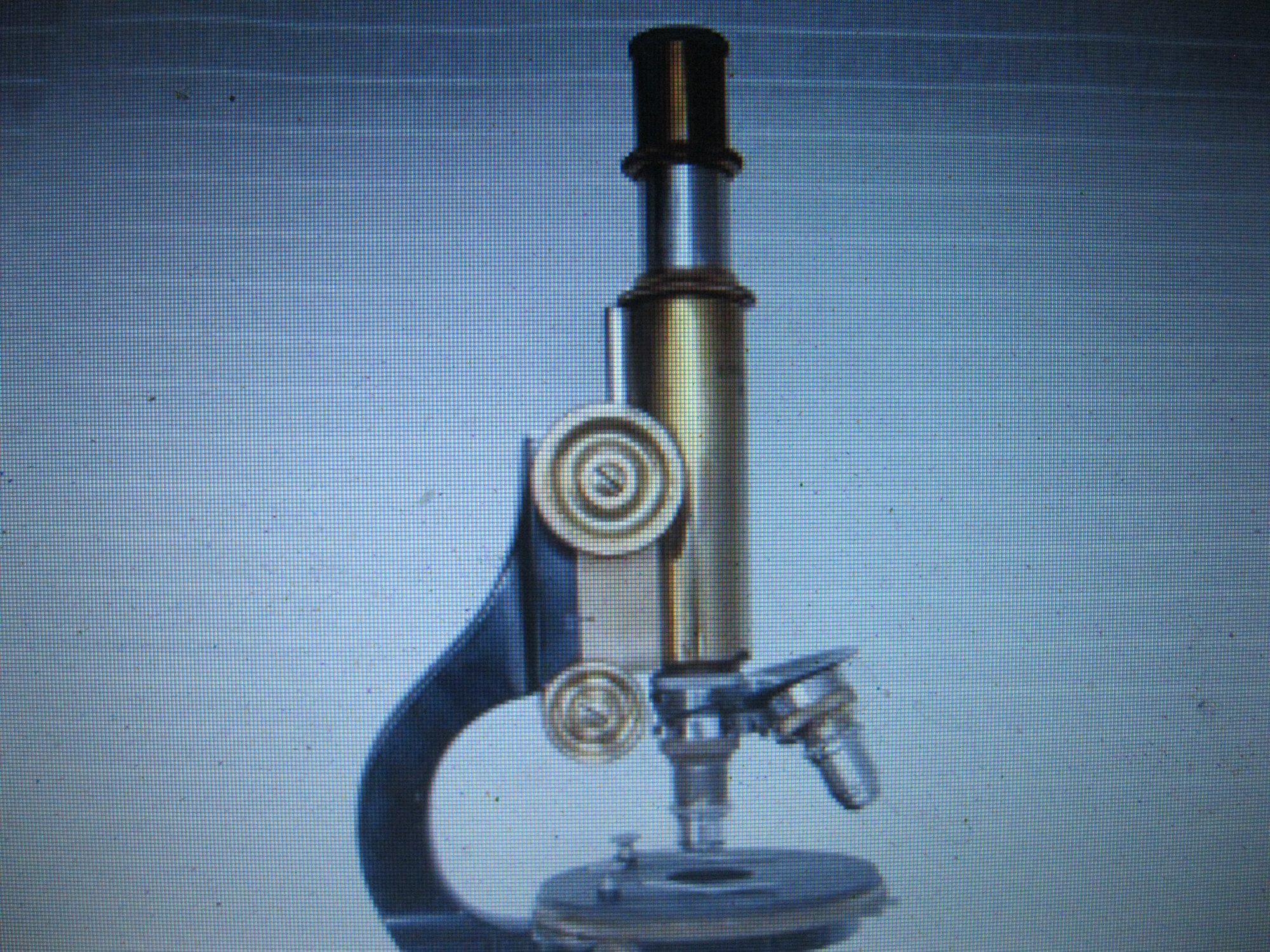 Mikroskop Kristíny Matulovej