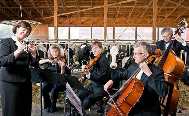 Hudba a zvieratá